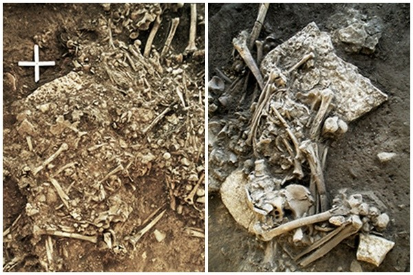 最古老鼠疫样本藏牙齿里出土 新石器文明消亡之谜
